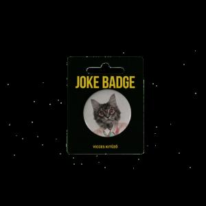 Retro macska vicces kitűző termék kép