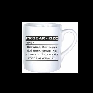 Programozó vicces bögre termék kép
